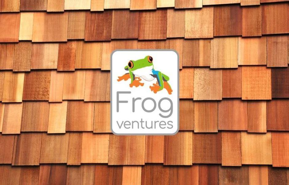Logo-wood-frogventuresllc